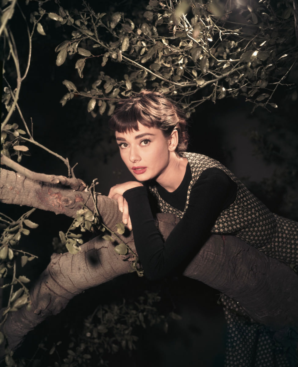 actress-audrey-hepburn-leaning-on-tree
